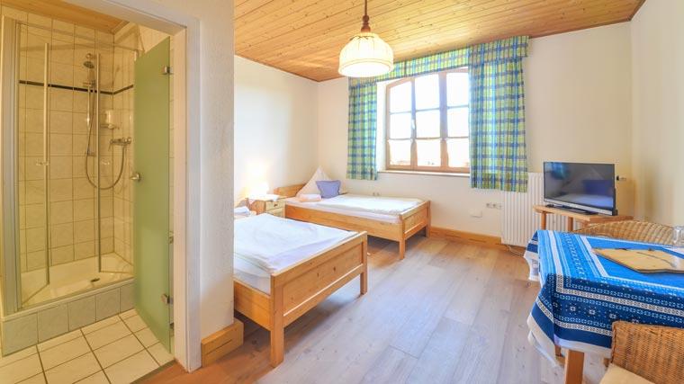 Zweibettzimmer im Hotel Pritscher in Bayerbach